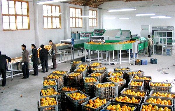 Fruit FX – System wsparcia produkcji